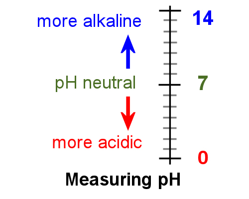 measuring ph levels essay The ph range of foods varies considerably with some typical values of food and related solutions illustrated in figure 1 due to the logarithmic nature of the measurement, even small changes in ph are significant.